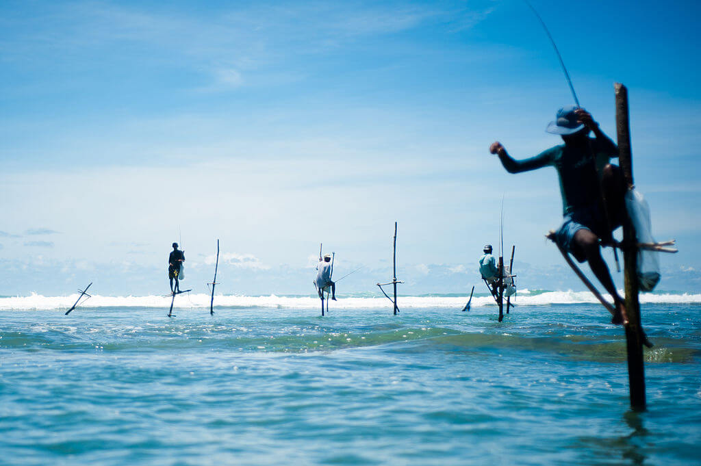 1024px-Stick_fishermen_of_Sri_Lanka