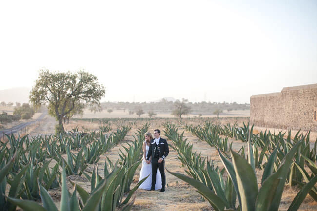 weddings in mexico city